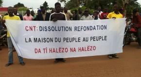 LA DISSOLUTION DU CONSEIL NATIONAL DE TRANSITION : UN VRAI FAUX DEBAT