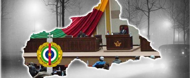 CENTRAFRIQUE : C'EST QUOI UNE TRANSITION ?