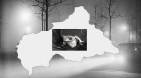 GRAND FORMAT – CENTRAFRIQUE : « LA GRENOUILLE QUI NE SAVAIT PAS QU'ELLE ETAIT CUITE… »