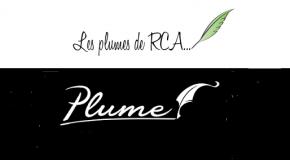 « LES PLUMES DE RCA » ET NON « UNE PLUME DE CENTRAFRIQUE »